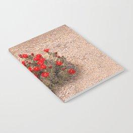 Sandia Cactus Flowers Notebook