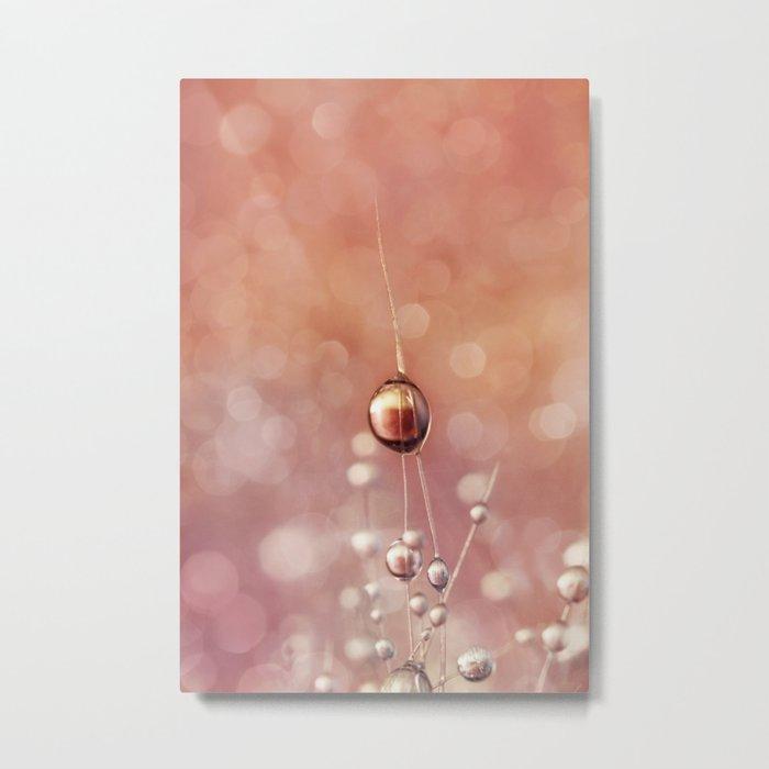 Sunset & Snowflake Cactus Drops Metal Print