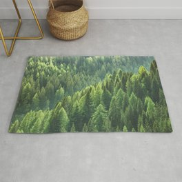 Pine tree forest in the morning fog Rug