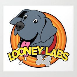 Looney Labs Art Print