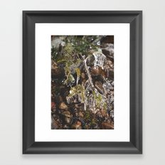 Thaw Framed Art Print