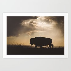 Bison in the Storm - Badlands National Park Art Print