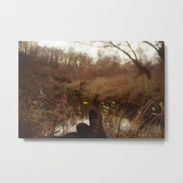 Turtle River Metal Print