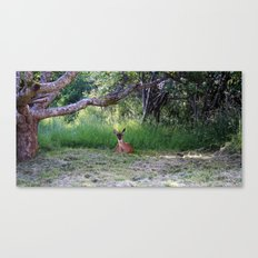 Hello? Canvas Print