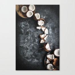 Cracked Coconut Still Life Canvas Print