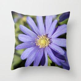 European Daisy Photography Print Throw Pillow