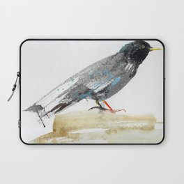 Australian Starling Laptop Sleeve