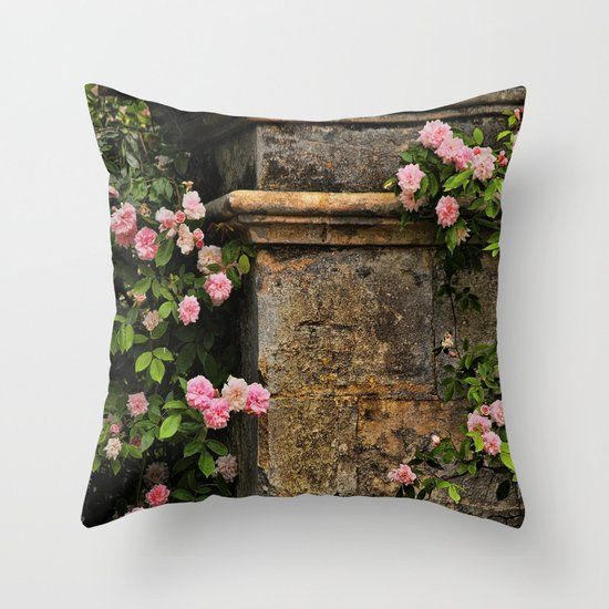 Stones and Roses Throw Pillow