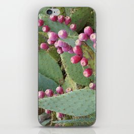 Desert Fruit iPhone Skin