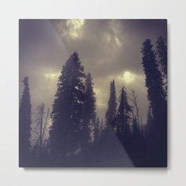 Untitled XIV Metal Print