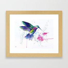 Hummingbird and Flower Framed Art Print