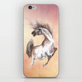 Crazy Horse iPhone Skin