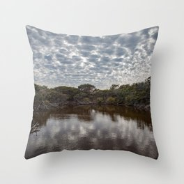 Brown Lake Throw Pillow