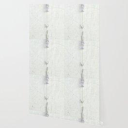 elusive Wallpaper