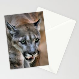 COUGAR MOUNTAIN LION Stationery Cards