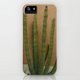 Cabo Cactus XI iPhone Case