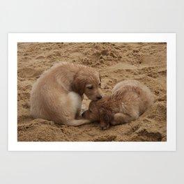 Irmãos - Sand Dogs (Cachorros de areia) Series - por Gustavo Souto Art Print