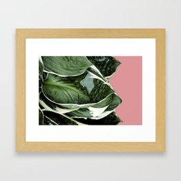 Lush Leaves Framed Art Print