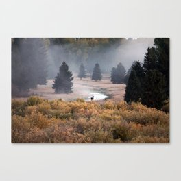 Moosey Misty Morning Canvas Print