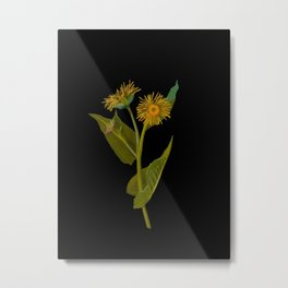 Inula Helenium, Elecampane Mary Delany Vintage Botanical Floral Collage Delicate Paper Flowers Metal Print