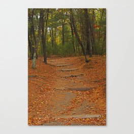 Walden Pond path into the forest Canvas Print