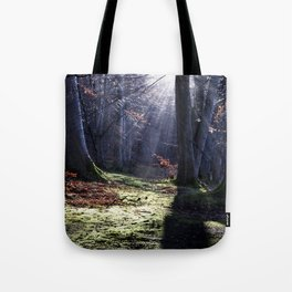 Fairy tale, forest landscape Tote Bag