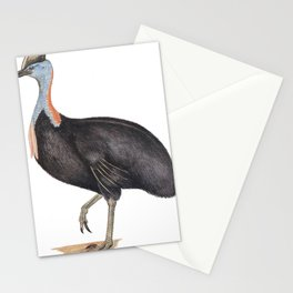 Neville W. Cayley - What Bird Is That? (1931) - Southern Cassowary Stationery Cards