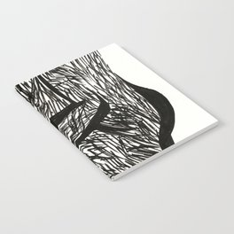 Full Notebook