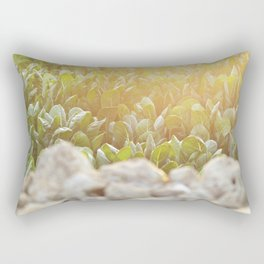 Sunset over a Mediterranean field and a dry stone wall Photo for Interior Design, south Italy, Rectangular Pillow