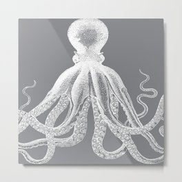 Octopus | Grey and White Metal Print