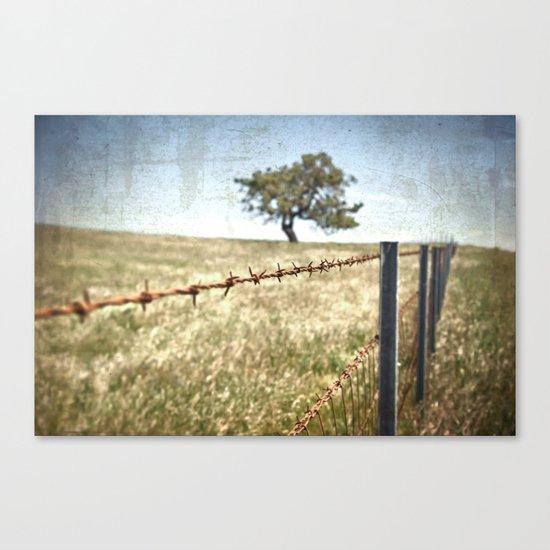 Tree Behind Fence Canvas Print