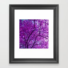 purple tree XXXI Framed Art Print