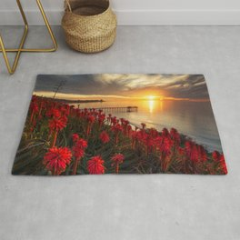 Pictures USA Arizona Cliff Nature canyons Sky Snow Rug