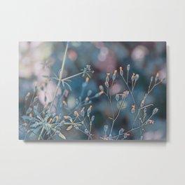 Small flowers Metal Print