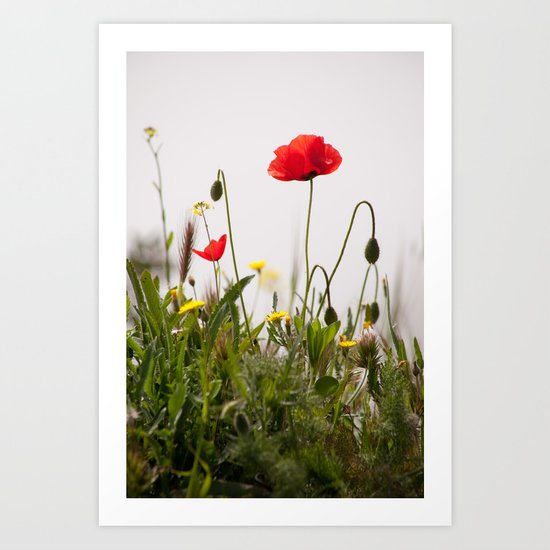 Spring Flora 1086 Art Print
