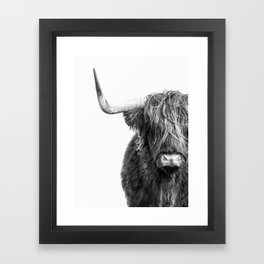 Highland Cow Portrait - Black and White Framed Art Print