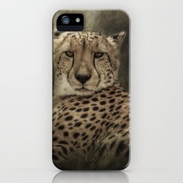 Pausing To Rest iPhone Case