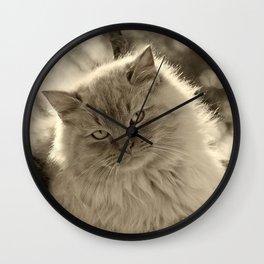Sunlit Cat in Sepia Wall Clock