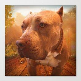 ARTHUR (shelter pup) Canvas Print