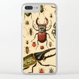 Popular History of Animals Beetles Vintage Scientific Illustration Educational Diagrams Clear iPhone Case