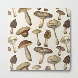 Fun Fungi Mushrooms No. 1 Metal Print