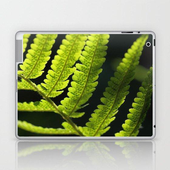 Farn Laptop & iPad Skin