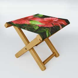 Two of a Kind Folding Stool