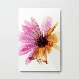 Frozen Flowers 6 Metal Print