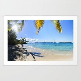 St John Salomon Beach Art Print