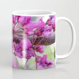 Redbud flowers Coffee Mug
