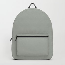 Neutral Mid-tone Gray Solid Color Pairs to Sherwin Williams Oyster Bay SW 6206 Backpack