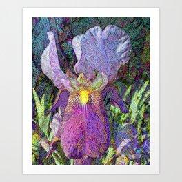 Impressionist Iris Art Print