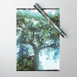 Ramona Oak Tree Wrapping Paper