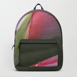 Bird of paradise flower to be Backpack